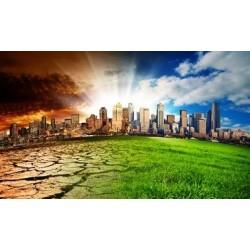 Mercados de carbono: una forma de mitigar el cambio climático