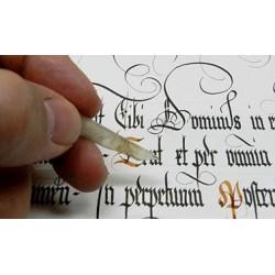 Introducción a la caligrafía y paleografía en archivos hispanos medievales y modernos