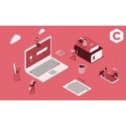 Introducción a la programación en C: Funciones y punteros