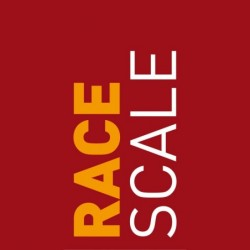 Prehospital care of acute stroke and patient selection for endovascular treatment using the RACE scale