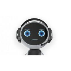 Chatbots con Inteligencia Artificial - Paso a Paso