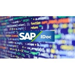 SAP IDoc Configuración y Desarrollo