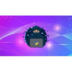Máster en Hacking con Python - Vuélvase un Hacker Ético