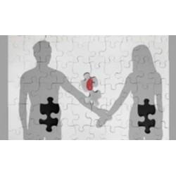 Trasplante de órganos: desafíos éticos y jurídicos
