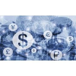 Mercados de capital y participantes claves