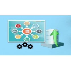 Curso de fundamentos de bases de datos relacionales
